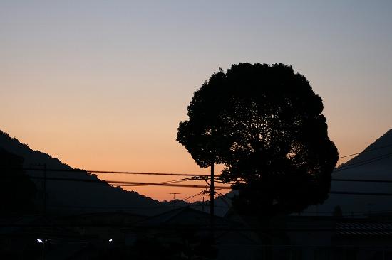 2008.11.5 am6:00